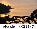 浜野浦の棚田 棚田 田んぼの写真 40218474