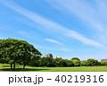 青空 雲 公園の写真 40219316