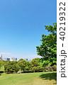 青空 初夏 公園の写真 40219322