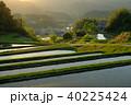 棚田 夕方 水田の写真 40225424