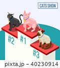 場所 ねこ ネコのイラスト 40230914