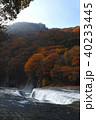 【紅葉最盛期】吹割の滝・吹割渓谷の紅葉(午後) 40233445