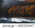 【紅葉最盛期】吹割の滝・吹割渓谷の紅葉(午後) 40233447