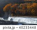 【紅葉最盛期】吹割の滝・吹割渓谷の紅葉(午後) 40233448