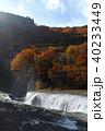 【紅葉最盛期】吹割の滝・吹割渓谷の紅葉(午後) 40233449