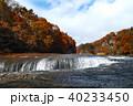 【紅葉最盛期】吹割の滝・吹割渓谷の紅葉(午後) 40233450