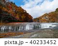 【紅葉最盛期】吹割の滝・吹割渓谷の紅葉(午後) 40233452