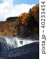 【紅葉最盛期】吹割の滝・吹割渓谷の紅葉(午後) 40233454