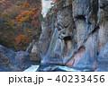 【紅葉最盛期】吹割の滝・吹割渓谷の紅葉 般若岩 40233456