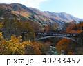 【紅葉最盛期】吹割の滝・吹割渓谷の周辺の紅葉 40233457