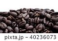 コーヒー豆 40236073