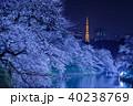 千鳥ヶ淵の夜桜と東京タワー 40238769