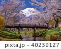 忍野八海 富士山と桜 40239127