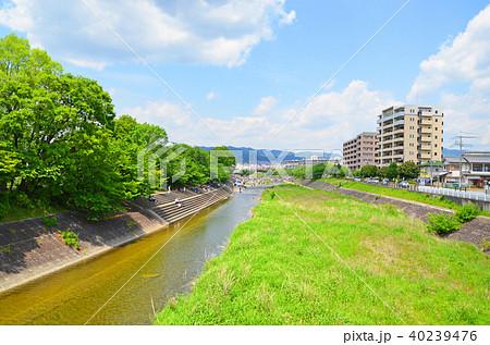 大阪府高槻市 芥川の風景 40239476