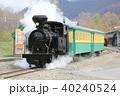 雨宮21号(北海道遠軽町丸瀬布・森林公園いこいの森) 40240524