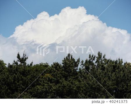 初夏の青空に白い雲 40241375