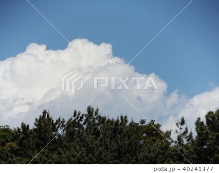 初夏の青空に白い雲 40241377