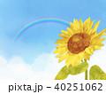 向日葵 ひまわり 花のイラスト 40251062
