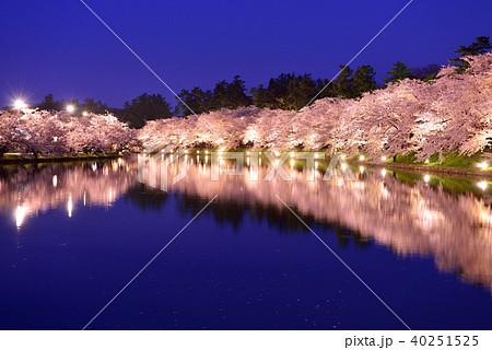 弘前公園のライトアップ 40251525