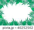 椰子の木 40252502
