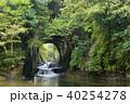 濃溝の滝 滝 川の写真 40254278
