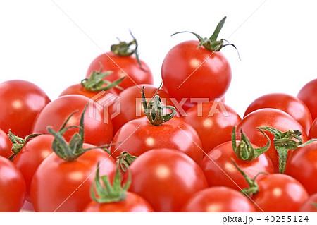 ミニトマト 40255124