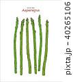 アスパラ アスパラガス ベクタのイラスト 40265106