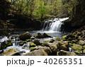 蓼科 渓流 滝の写真 40265351