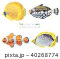 モザイク 熱帯魚 セットのイラスト 40268774