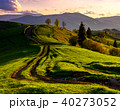 road through green hills at sunset 40273052