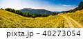 Panorama of Carpathian mountains in summer 40273054