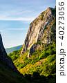 cliffs of Trascau mountains canyon 40273056