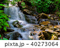 small waterfall in forest 40273064