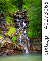 small waterfall in forest 40273065