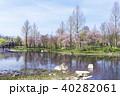 青空 初夏 新緑の写真 40282061
