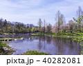 青空 初夏 新緑の写真 40282081
