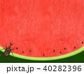 背景-スイカ-かぶとむし 40282396