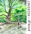 木 新緑 公園のイラスト 40285067
