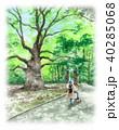 木 新緑 公園のイラスト 40285068