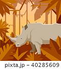 ジャングル 密林 ベクターのイラスト 40285609