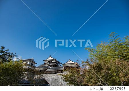 愛媛県 秋の松山城 本丸 40287993