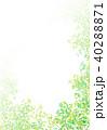 葉 枝 背景のイラスト 40288871
