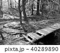 Small footbridge in nature 40289890