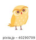 鳥 ふくろう フクロウのイラスト 40290709
