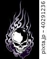 頭蓋骨 スカル ドクロのイラスト 40291236