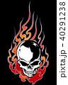 頭蓋骨 スカル ドクロのイラスト 40291238
