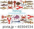 サカナ 魚 シーフードのイラスト 40304534