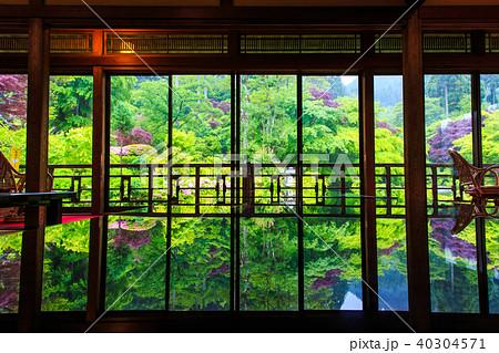 新緑 環境芸術の森 【佐賀県唐津市】 40304571