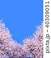 桜 青空 春のイラスト 40309051