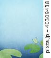 蓮 葉 池のイラスト 40309438